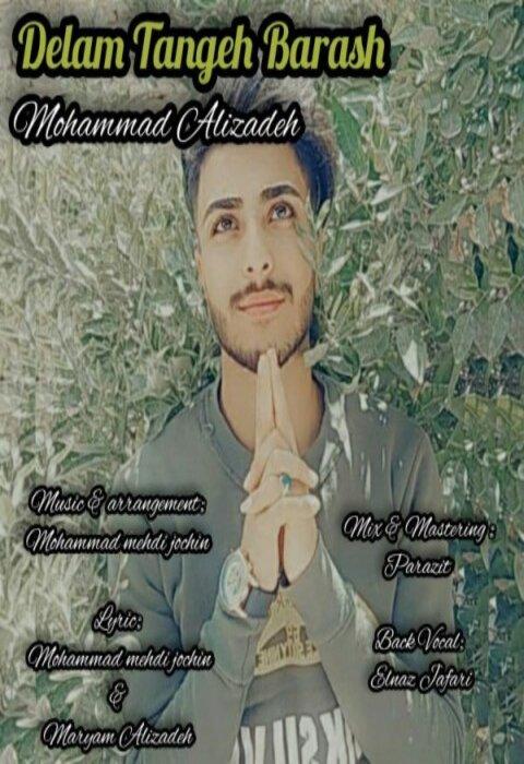 دانلود آهنگ محمد علیزاده به نام دلم تنگه براش